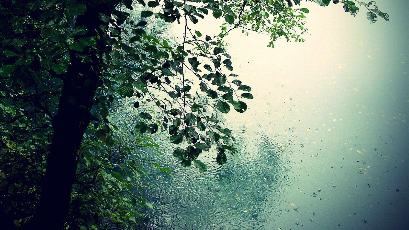 rainproof_04